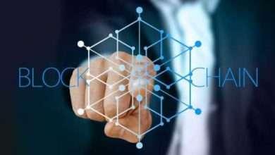 Bild von Neue Partnerschaft bringt DeFi und NFTs zur Cardano-Blockchain