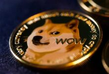 Bild von Dogecoin (DOGE) bringt mehr Schaden als Nutzen: Finanzberater