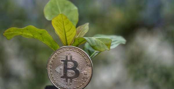1ee8f322dba79db6cfddbd5df8a9874a - Klimaneutrales Bitcoin-Mining-Unternehmen wird von globalen Influencern unterstützt
