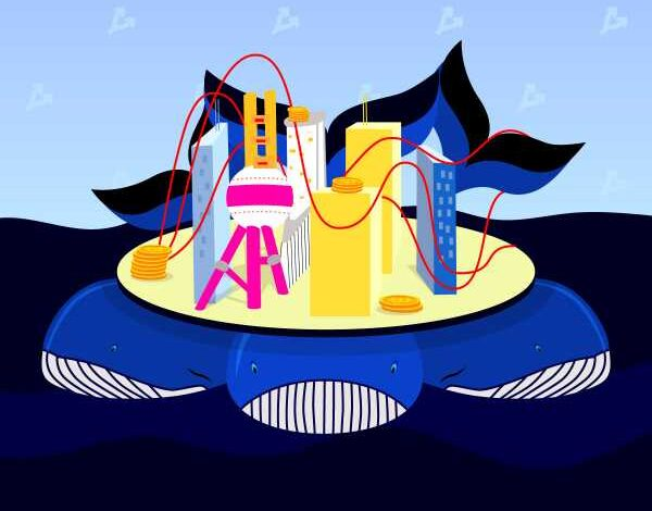 3ba743e0eb8b523784a5bb8578cb3eba 600x470 - Мнение: киты приобрели почти 122 600 BTC на фоне обвала рынка