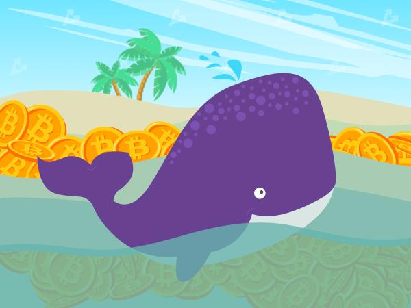 4b80eec0cc0e230ae506e9cab70bbd1f - Мнение: киты воспользовались коррекцией для покупки биткоина