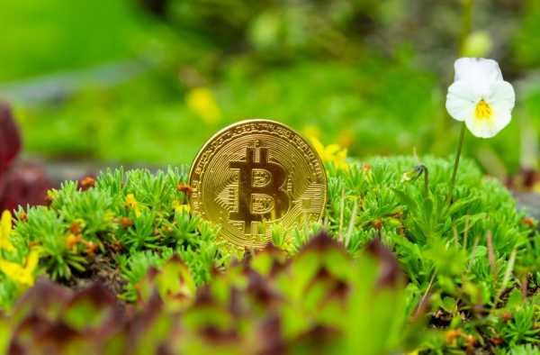 0cfafe7f60b6cd183deb8c68d24e2f8a - Auf der grünen Welle – Bitcoin-Mining wird nachhaltig(er)