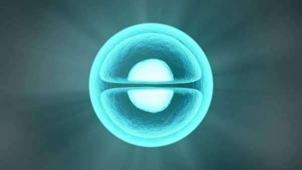 "133cc6c889f4e536c1eafae1a88c3d88 - Cosmos (ATOM) Prognose 2021-2028: Wird das ""Internet der Blockchains"" zum Senkrechtstarter?"