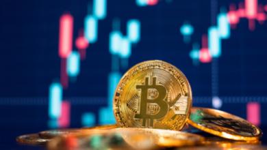 Bild von Bitcoin schließt stärkste Wochenkerze seit April