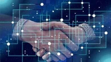 Bild von Algorand kaufen? Skybridge Capital sammelt 100 Mio. Dollar für ALGO-Fonds, beantragt Krypto-ETF