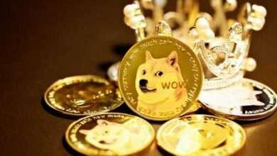 Bild von Dogecoin stürzt immer weiter ab: DOGE-Transaktionen jetzt auf niedrigstem Stand seit 2017