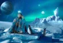 Bild von Polar Coin (POLARV3) & SpacePenguin: Kurs-Plus von mehr als 200%! Einsteigen oder abwarten?
