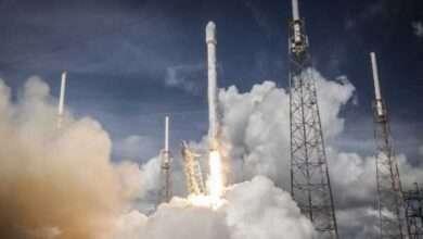 Bild von Safebull Coin (SAFEBULL) zündet die Kurs-Rakete: neue Kryptowährung steigt um 228% in 24 Stunden