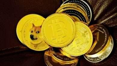 Bild von Warum Bitcoin, Ethereum und Dogecoin diese Woche so stark gestiegen sind